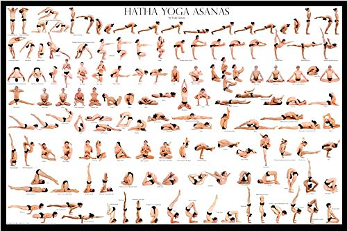 Amazon.com : Esak Garcia Hatha Yoga Asanas Poster : Sports ...