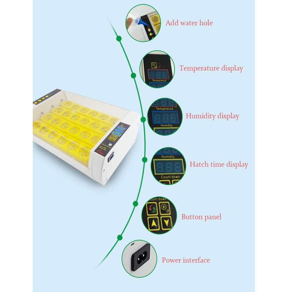 CM Incubatore Automatico, Mini incubatore incubatore incubatore Digitale, 24 Uova con Display di Temperatura a LED, modulazione Automatica della Temperatura dell'uovo, Standard Europeo, Spina Standard Britannica 529e3d