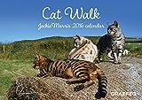 Cat Walk 2016 Calendar