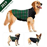 Dog Jacket Winter Dog Coat Warm Dog Sweater Waterproof Dog Clothes Reflective Dogs Apparel 2019 Dog Vest Reversible Dogs Cold Weather Coats for Small Medium Large Dog (S M L XL XXL) Review