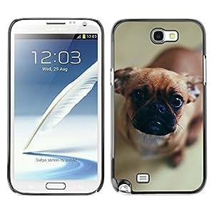 YiPhone /// Prima de resorte delgada de la cubierta del caso de Shell Armor - Pug Puppy Dog Canine Pet Brown Nose - Samsung Galaxy Note 2 N7100