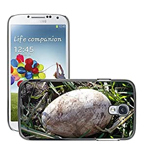 Etui Housse Coque de Protection Cover Rigide pour // M00130521 Duck Egg Naturaleza Animal Pájaro // Samsung Galaxy S4 S IV SIV i9500