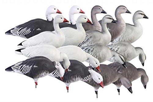 Avery Greenhead Gear Pro-Grade Goose Decoy,Full Body Snow/Blue/Harvester Pack,Dozen