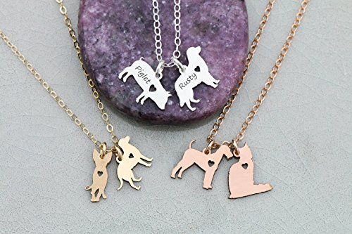 Two Pets Necklace - IBD - Cat Dog Animal Pendant - 935 Sterling Silver 14K Rose Gold Filled Charm - 3/4 Inch 19.05 MM - Best Friend - Ships in 1 Business Day