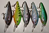 5 Custom Shad Lures - Plugs Crankbaits Bass Fishing Set L5AB