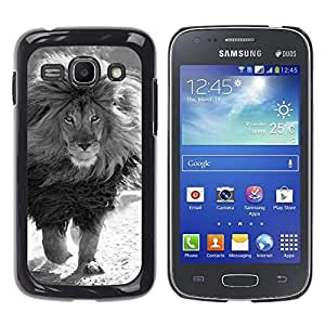 FlareStar Colour Printing Mane Black White Male Lion Powerful cáscara Funda Case Caso de plástico para Samsung Galaxy Ace 3 III / GT-S7270 / GT-S7275 / GT-S7272