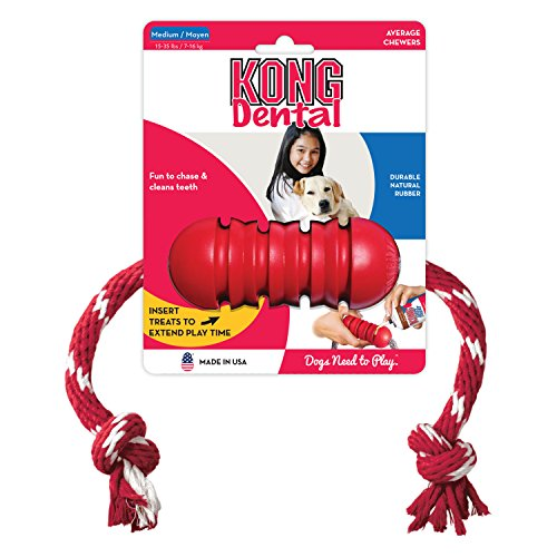 KONG Dental KONG with Rope, Dog Toy, Medium, Red