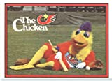 1982 Donruss Baseball Card #531 San Diego Chicken Near Mint Or Better