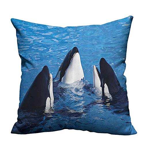 YouXianHome Decorative Throw Pillow Case Three Orca Killer Whales Aquarium Swim Pacific Marine Sea and World Ocean Ideal Decoration(Double-Sided Printing) 16x16 inch -