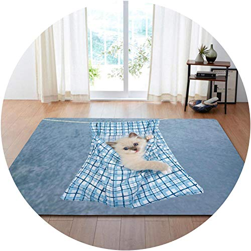 Party Decoration Rugs 3D Lovely Cat Carpets s Room Play Mat Flannel Memory Foam Area Rug Carpet for Living Room,No-10,160x121cm ()