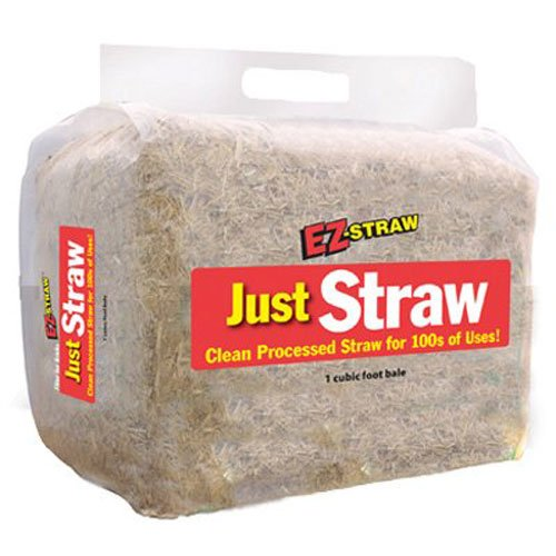 Cheap  EZ Straw Just Straw Clean Processed Straw, Small Bale (1 cubic foot..