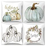 Decemter Happy Fall Yall Pumpkin Thanksgiving Decoration Cotton Blend Cushion Cover Set of 4,18x18