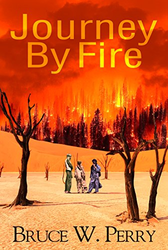 Journey By Fire by [Perry, Bruce W.]