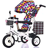 Multifunctional Children's Tricycle Baby Cart 1-6 Years Old Infant Child Bicycle Removable Boys And Girls Bike Multi-color Cloth Awning (Color : White-A)