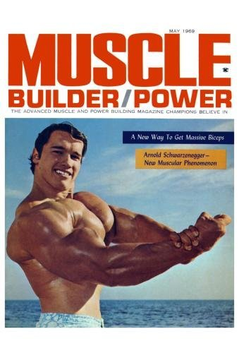 Amazon com: Arnold Schwarzenegger Poster Muscles Body