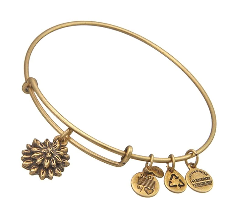 Alex Ani Expandable Bangle Bracelet Image 1