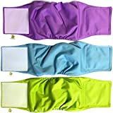 Pet Magasin Male Dog Belly Manner Band Wraps Nappies, 3-Pack, Blue Green and Purple, Large