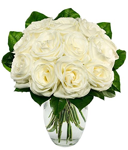 Flowers - One Dozen White Roses (Free Vase Included)