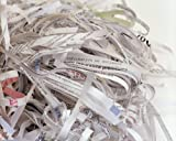 Document Shredding Service Start Up Sample Business Plan!