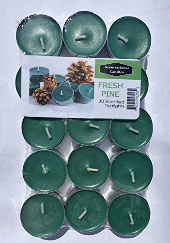 Cinnamon Tealight Candles - Scentsational Candles Tealight Candles - Made in the USA - Exclusive New Feature: Sealed in a Reclosable Bag to Preserve Scent and Safe Storage 30 Pack - (Fresh Pine)