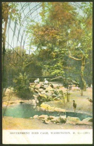 Government Bird Cage Washington DC Zoo postcard 1910s