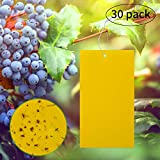 LUTER 30-Pack Dual-Sided Yellow Sticky Traps for Flying Plant Insect Like Fungus Gnats