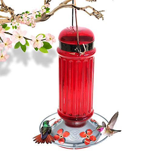 Grateful Gnome - Hummingbird Feeder - Red Glass Bottle with Metal Clamp Hanger - 28 Fluid Ounces (Metal Hummingbird Feeder)