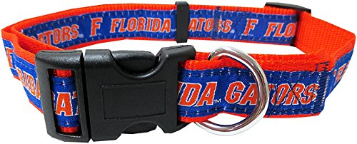COLLEGE FLORIDA GATORS Dog Collar, Medium