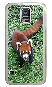 Samsung S5 best cases Little Raccoon PC Transparent Custom Samsung Galaxy S5 Case Cover