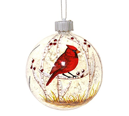Burton and Burton 9727670 Led Red Cardinal Christmas Ornament Multicolor