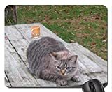 (Cats Mouse Pad),Cool cat Mouse Pad, Mousepad