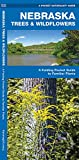 Nebraska Trees & Wildflowers: A Folding Pocket Guide to Familiar Plants (Wildlife and Nature Identification)