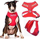 CAUTION (Do Not Approach) Red Color Coded Non-Pull Front and Back D Ring Padded and Waterproof Vest Dog Harness PREVENTS Accidents By Warning Others Of Your Dog In Advance (L)