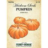Ferry-Morse Heirloom Pumpkin Fairytale Seeds