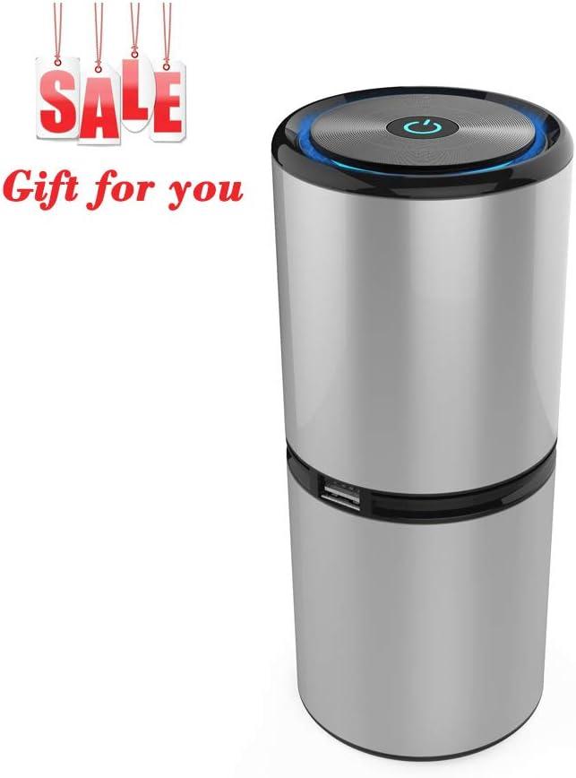 PINUMI Purificador Aire, Ionizer Car Purificador de Aire con Cable USB,sin Necesidad de reemplazar el Filtro, Eliminador para PM2.5,Alergias, Bacterias, Moho,Olores (Plata): Amazon.es: Hogar