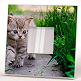 fan wall mirror - Kitty with Blue Eyes Wall Framed Mirror Decor Printed Animal Pet Fan Art Home Room Design Gift