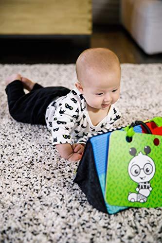 51a1v n8sKL - Baby Einstein Flip for Art High Contrast Floor Activity Mirror with Take Along Cards, Newborn+