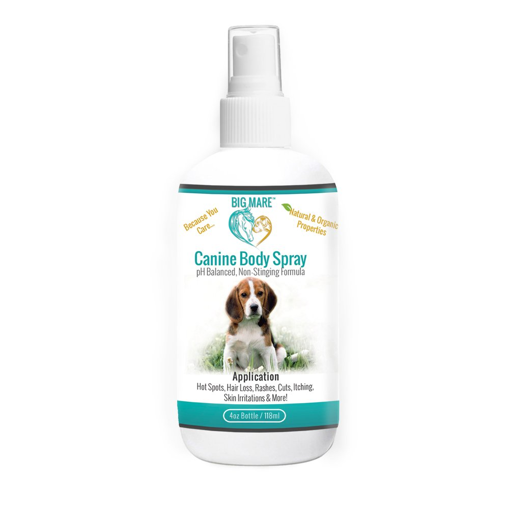Big Mare Canine Body Spray : Antibacterial/Antifungal. Clinically Proven Effective On Hotspots, Yeast, Dermatitis, Staph, Ringworm, Hair Loss, And More. Veterinary Approved & Recommended. (4 oz)