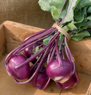David's Garden Seeds Kohlrabi Kolibri D320DX (Purple) 100 Hybrid Seeds