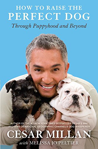 How to Raise the Perfect Dog: Through Puppyhood and Beyond (Best Way To House Train Your Puppy)