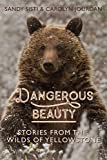 Dangerous Beauty: Stories from the Wilds of Yellowstone
