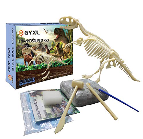 GYXL Dinosaur Fossil Toys, Dino Dig Kit, Kids Science Education Dinosaur Assembly Kit, Best Boys and Girls STEM Dinosaur Toys Gift. (T-rex) (Dinosaur Fossil Making Kit)