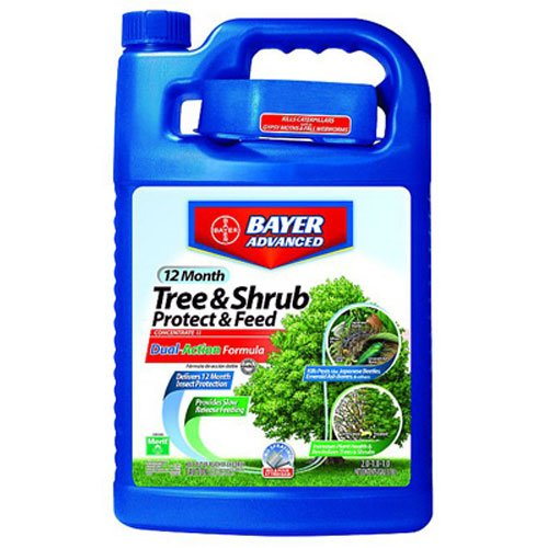 Bayer Advanced 701615 12 Month Tree and Shrub Protect and Feed Concentrate, 1-Gallon - 1 Gallon Concentrate