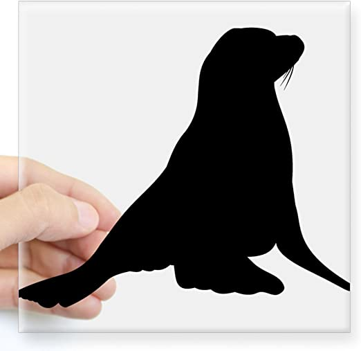 6/'/' or 8/'/' 3/'/' 5/'/' Patterned Sea Lion Animal Car Bumper Sticker Decal