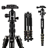 ZOMEI F678 Aluminum Portable Travel Tripod with Ball Head Twist Lock Lightweight Professional Compact Camera Tripods for Nikon Canon Sony All DSLR and Digital Camera