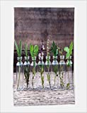 Minicoso Bath Towel Bottle of essential oil with herbs holy basil flower basil flower rosemary oregano sage parsley thyme and mint set up on old wooden background 51663211 For Spa Beach Pool Bath