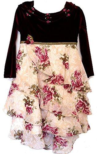 Biscotti Little Girls' Floral Holiday Dress 4 Burgundy ()