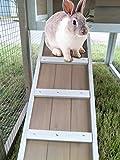 My Pet Companion Stilt House Rabbit Hutch, Brown