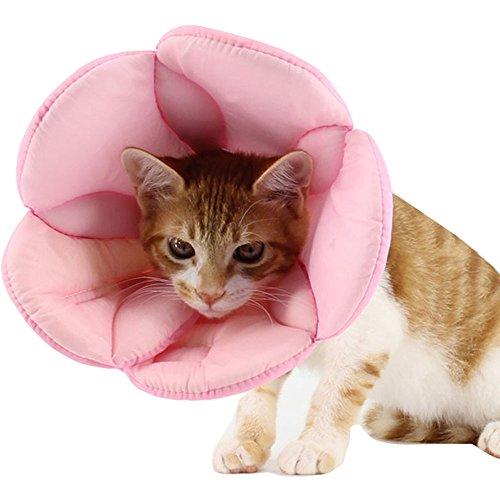 Bolbo (Nylon Cat Costume)