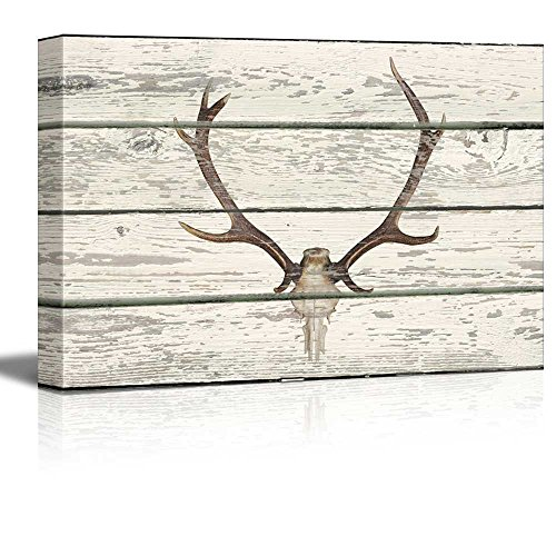 Deer Skull with Antlers II Western Artwork Rustic